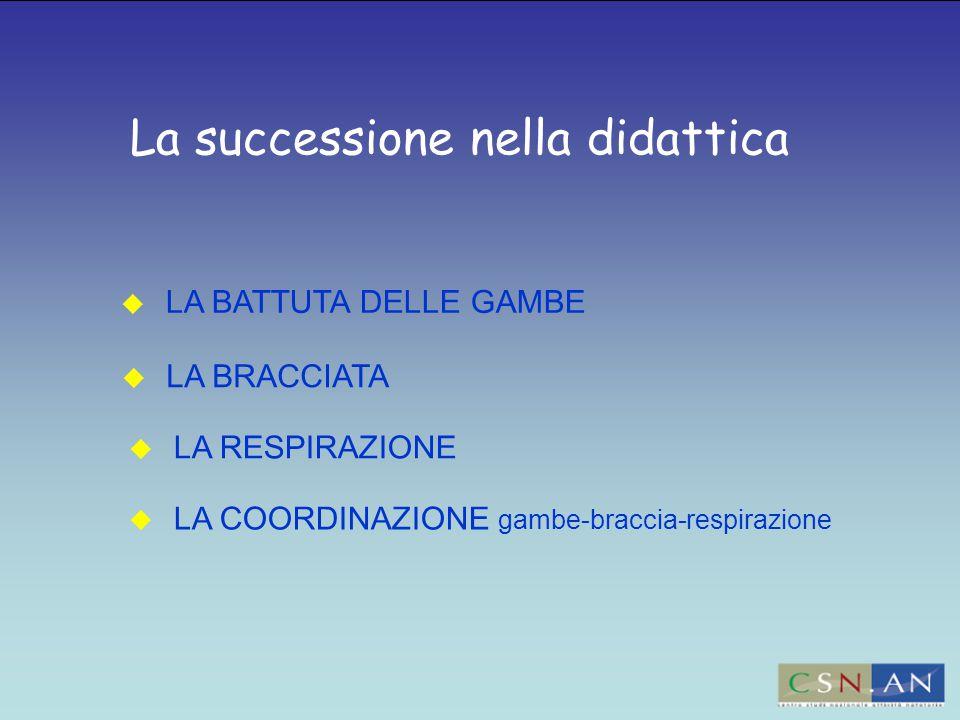 La successione nella didattica  LA BATTUTA DELLE GAMBE  LA RESPIRAZIONE  LA BRACCIATA  LA COORDINAZIONE gambe-braccia-respirazione