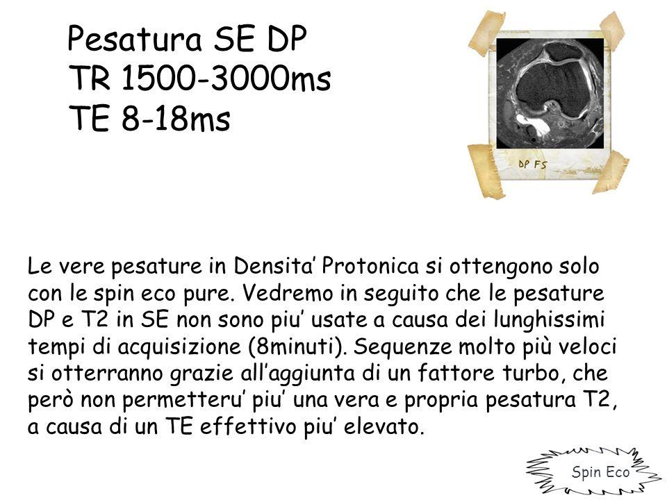 Pesatura SE DP TR 1500-3000ms TE 8-18ms Spin Eco Le vere pesature in Densita' Protonica si ottengono solo con le spin eco pure. Vedremo in seguito che