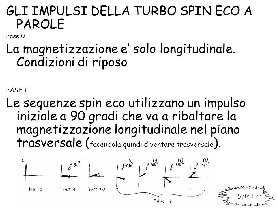 GLI IMPULSI DELLA TURBO SPIN ECO A PAROLE Fase 0 La magnetizzazione e' solo longitudinale. Condizioni di riposo FASE 1 Le sequenze spin eco utilizzano