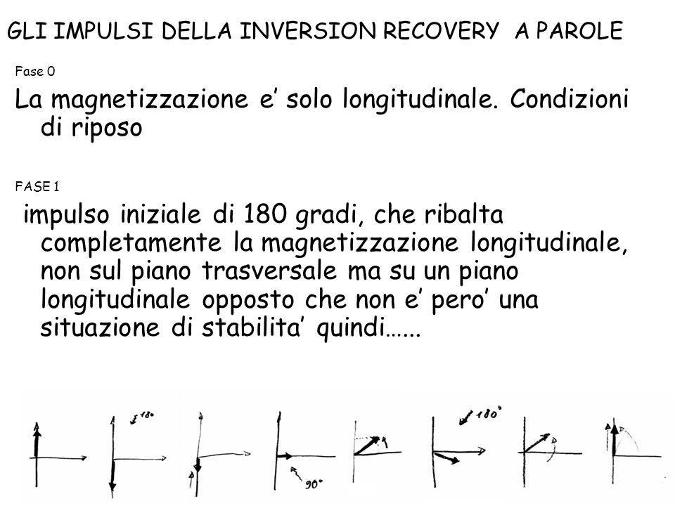 Fase 0 La magnetizzazione e' solo longitudinale. Condizioni di riposo FASE 1 impulso iniziale di 180 gradi, che ribalta completamente la magnetizzazio