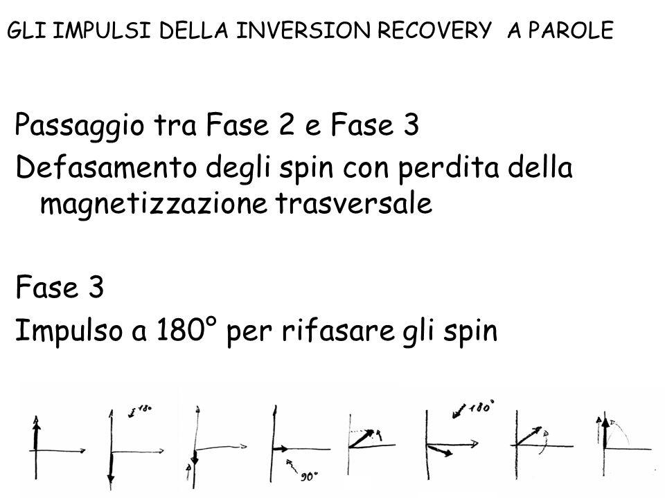 Passaggio tra Fase 2 e Fase 3 Defasamento degli spin con perdita della magnetizzazione trasversale Fase 3 Impulso a 180° per rifasare gli spin Spin Ec