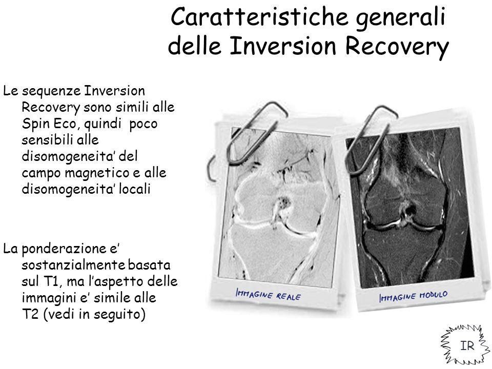 Caratteristiche generali delle Inversion Recovery Le sequenze Inversion Recovery sono simili alle Spin Eco, quindi poco sensibili alle disomogeneita'