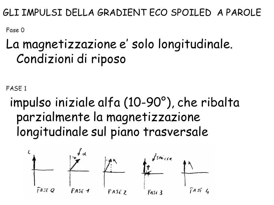 Fase 0 La magnetizzazione e' solo longitudinale. Condizioni di riposo FASE 1 impulso iniziale alfa (10-90°), che ribalta parzialmente la magnetizzazio