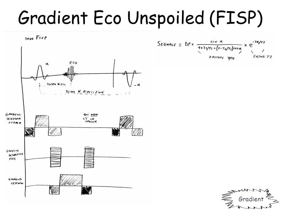 Gradient Eco Unspoiled (FISP) Gradient