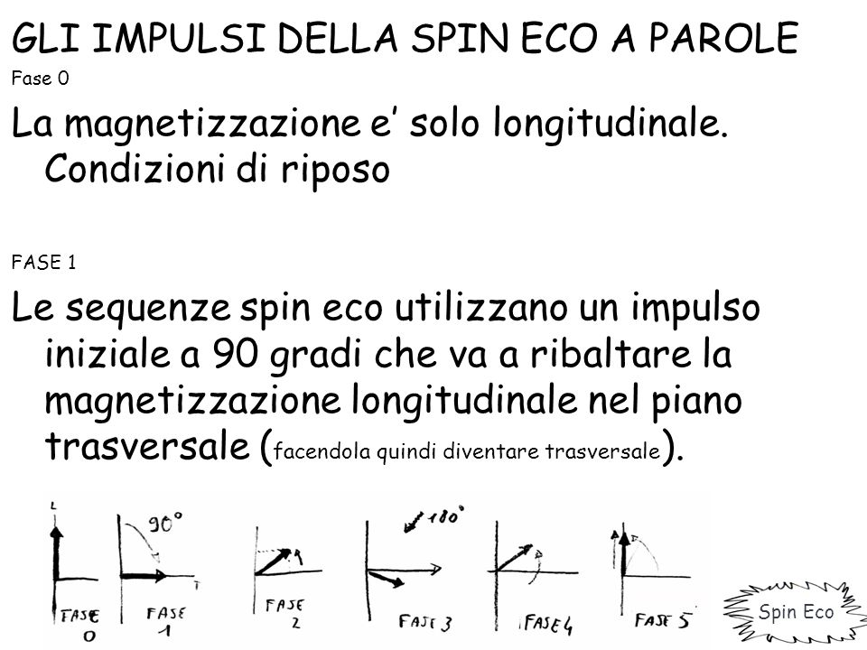 GLI IMPULSI DELLA SPIN ECO A PAROLE PASSAGGIO TRA FASE 1 E FASE 2 La perdita di magnetizzazione trasversale è data dal rilassamento T1 (spin->lattice) e dal rilassamento T2 (spin->spin).