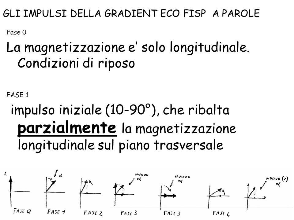 Fase 0 La magnetizzazione e' solo longitudinale. Condizioni di riposo FASE 1 impulso iniziale (10-90°), che ribalta parzialmente la magnetizzazione lo
