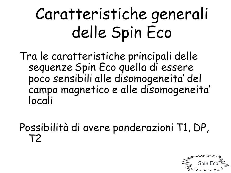 Caratteristiche generali delle Spin Eco Tra le caratteristiche principali delle sequenze Spin Eco quella di essere poco sensibili alle disomogeneita'