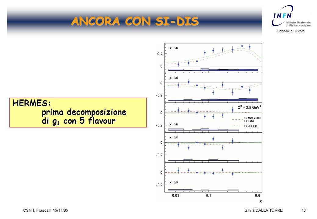 13 Sezione di Trieste Silvia DALLA TORRE CSN I, Frascati 15/11/05 ANCORA CON SI-DIS HERMES: prima decomposizione di g 1 con 5 flavour