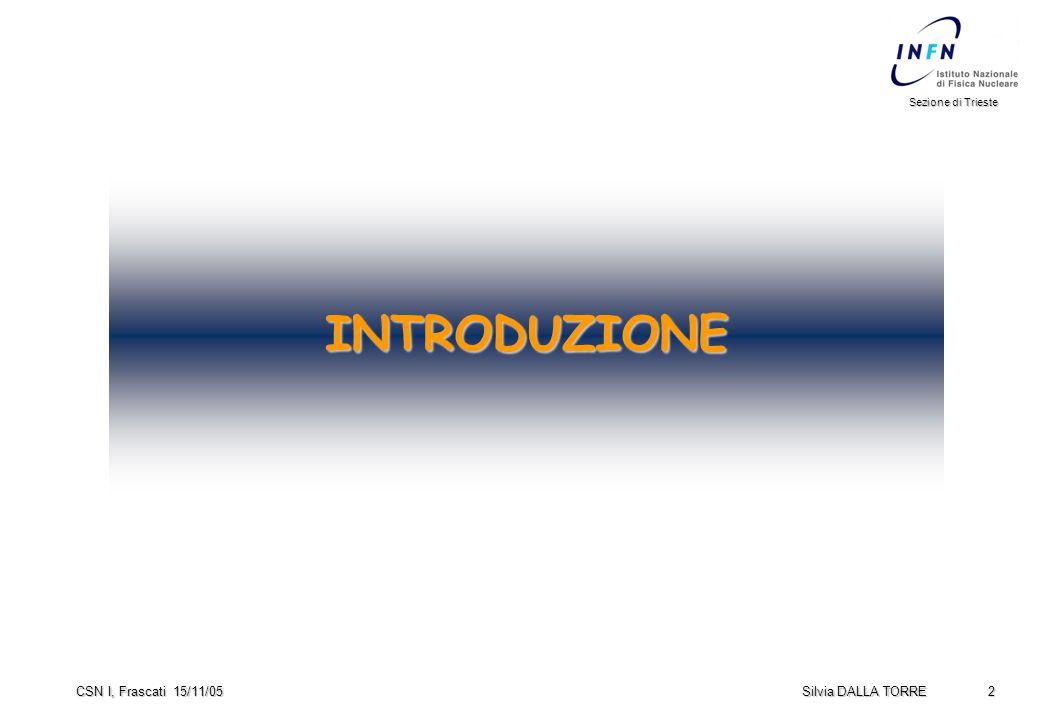 2 Sezione di Trieste Silvia DALLA TORRE CSN I, Frascati 15/11/05 INTRODUZIONE