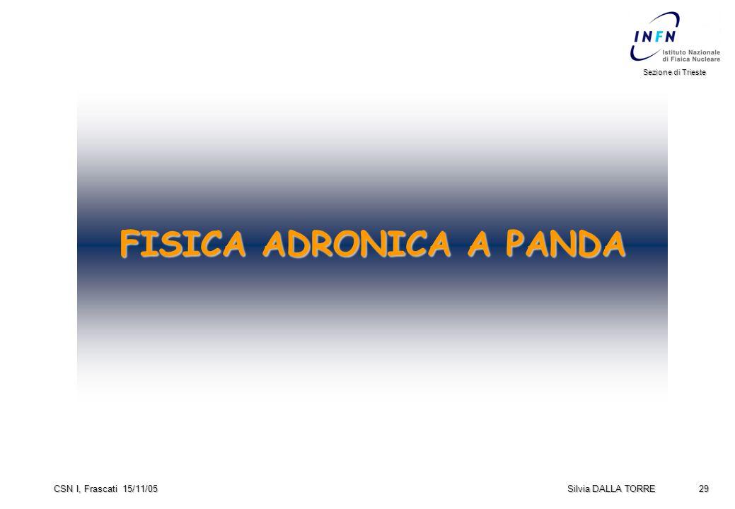 29 Sezione di Trieste Silvia DALLA TORRE CSN I, Frascati 15/11/05 FISICA ADRONICA A PANDA