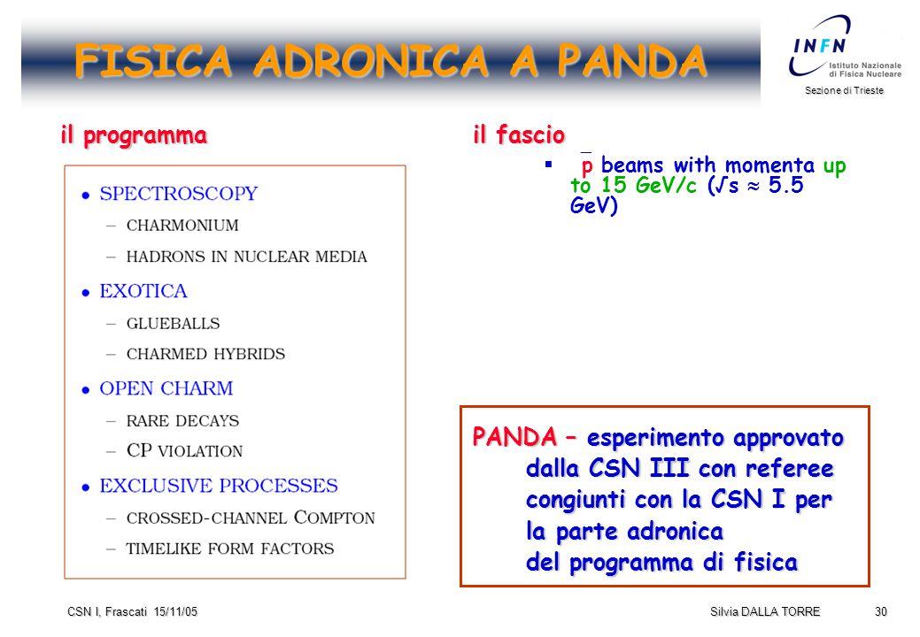 30 Sezione di Trieste Silvia DALLA TORRE CSN I, Frascati 15/11/05 FISICA ADRONICA A PANDA il programma il fascio   p beams with momenta up to 15 GeV/c (√s  5.5 GeV) PANDA – esperimento approvato dalla CSN III con referee congiunti con la CSN I per la parte adronica del programma di fisica