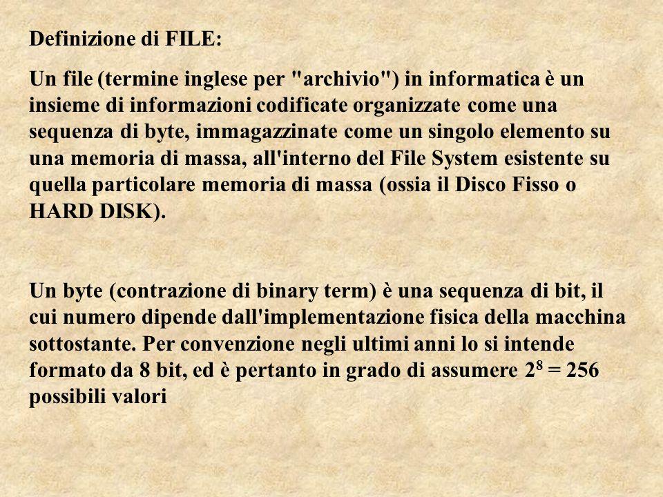 Definizione di FILE: Un file (termine inglese per archivio ) in informatica è un insieme di informazioni codificate organizzate come una sequenza di byte, immagazzinate come un singolo elemento su una memoria di massa, all interno del File System esistente su quella particolare memoria di massa (ossia il Disco Fisso o HARD DISK).
