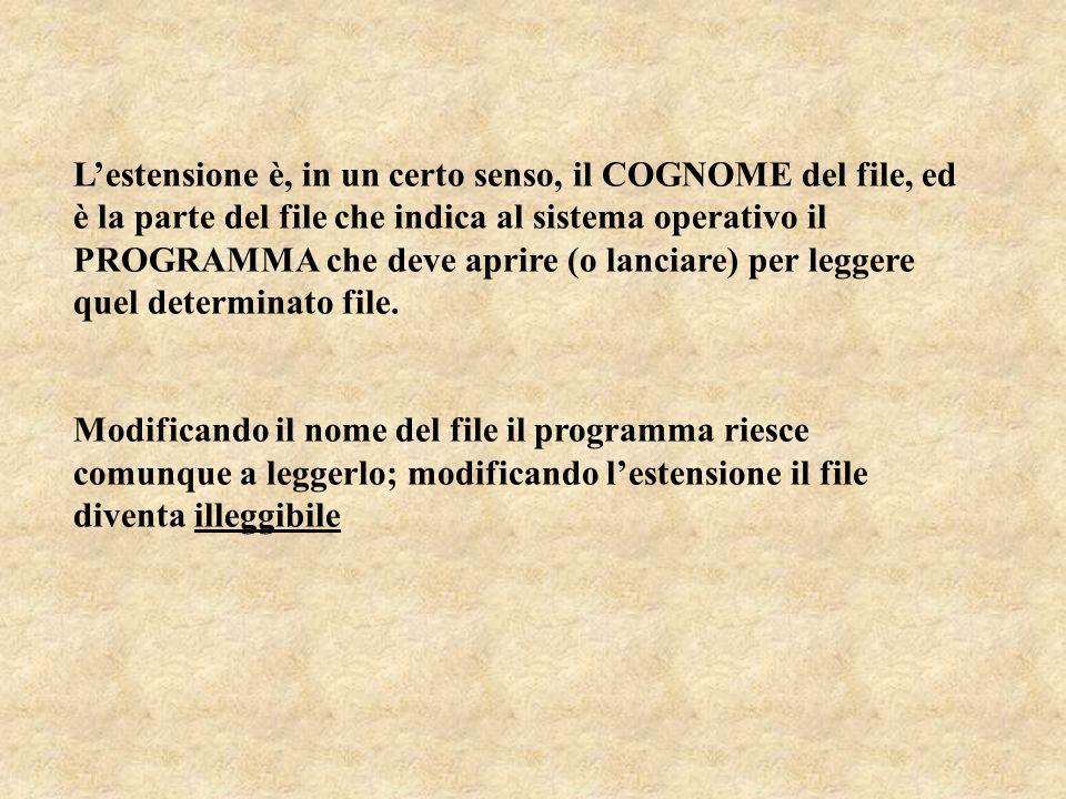 L'estensione è, in un certo senso, il COGNOME del file, ed è la parte del file che indica al sistema operativo il PROGRAMMA che deve aprire (o lanciare) per leggere quel determinato file.