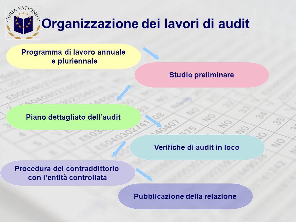 Organizzazione dei lavori di audit Studio preliminare Piano dettagliato dell'audit Procedura del contraddittorio con l'entità controllata Programma di lavoro annuale e pluriennale Pubblicazione della relazione Verifiche di audit in loco