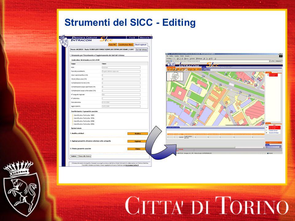 Strumenti del SICC - Editing