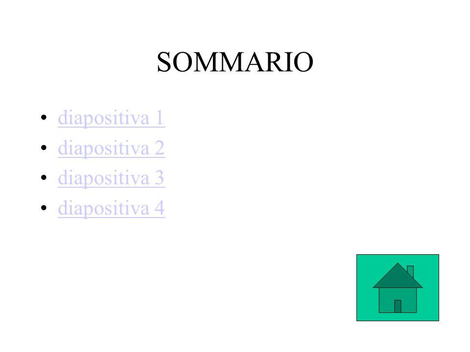 SOMMARIO diapositiva 1 diapositiva 2 diapositiva 3 diapositiva 4