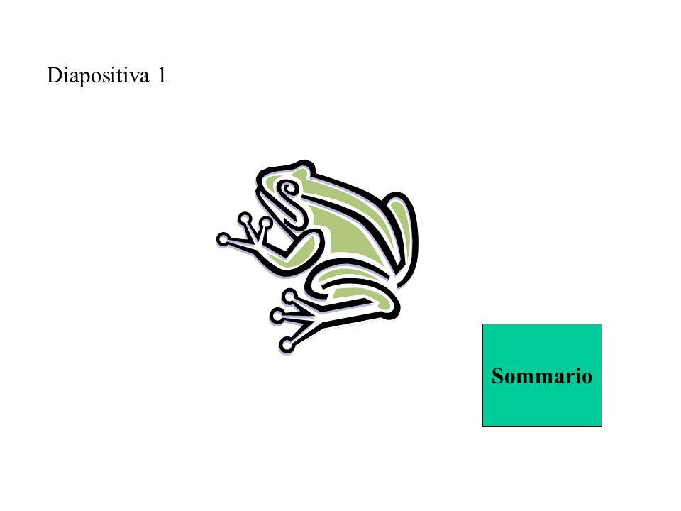 Diapositiva 1 Sommario