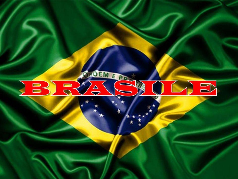 ASPETTO FISICO: Il Brasile è il paese più grande dell'america latina ed è per estensione in quinto paese del globo.