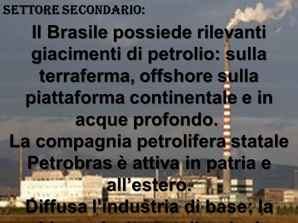 SETTORE SECONDARIO: Il Brasile possiede rilevanti giacimenti di petrolio: sulla terraferma, offshore sulla piattaforma continentale e in acque profondo.