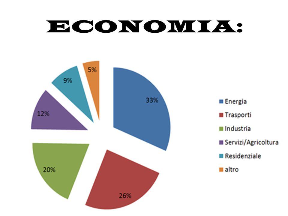 SETTORE PRIMARIO: Il Brasile è uno dei maggiori produttori ed esportatori mondiali di derrate agricole : in particolare di soia, caffè, canna da zucchero, agrumi, cacao, cotone.