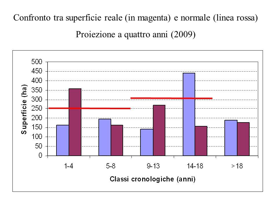 Confronto tra superficie reale (in magenta) e normale (linea rossa) Proiezione a quattro anni (2009)