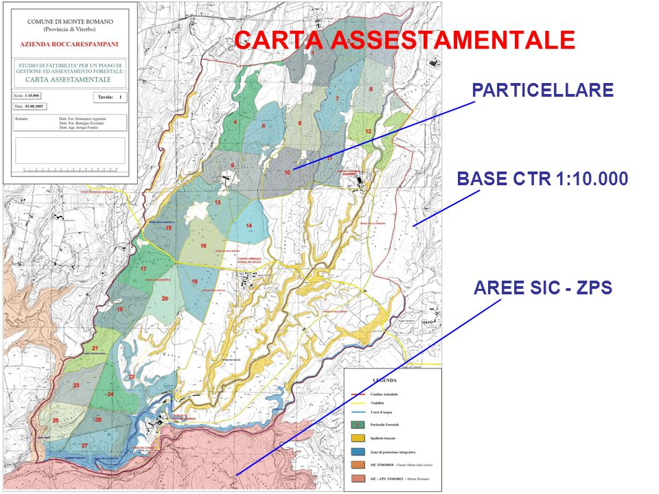 CARTA ASSESTAMENTALE BASE CTR 1:10.000 AREE SIC - ZPS PARTICELLARE