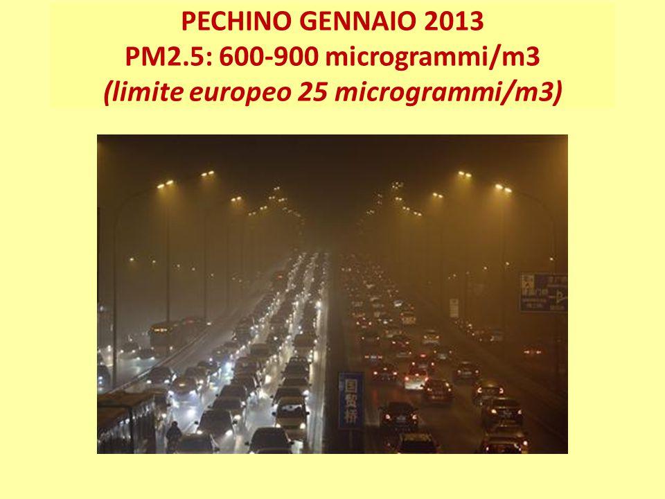 PECHINO GENNAIO 2013 PM2.5: 600-900 microgrammi/m3 (limite europeo 25 microgrammi/m3)