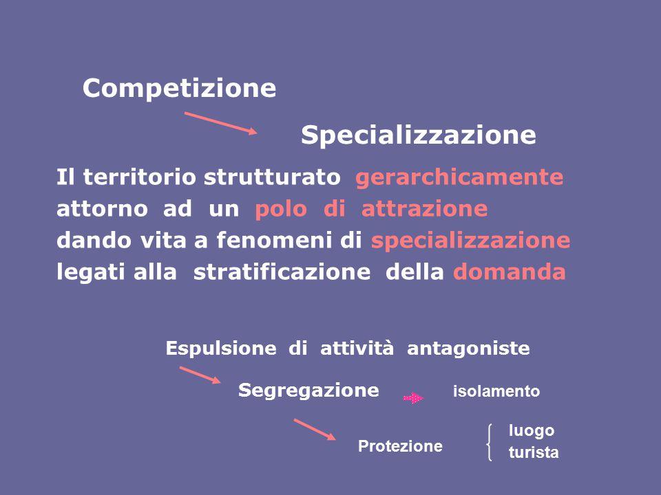 Competizione Specializzazione Il territorio strutturato gerarchicamente attorno ad un polo di attrazione dando vita a fenomeni di specializzazione leg