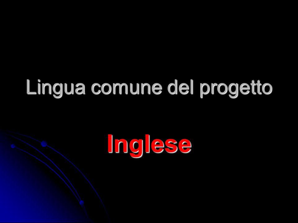 Lingua comune del progetto Inglese
