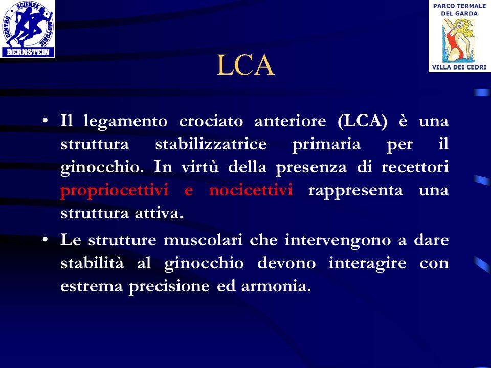 LCA Il legamento crociato anteriore (LCA) è una struttura stabilizzatrice primaria per il ginocchio. In virtù della presenza di recettori propriocetti
