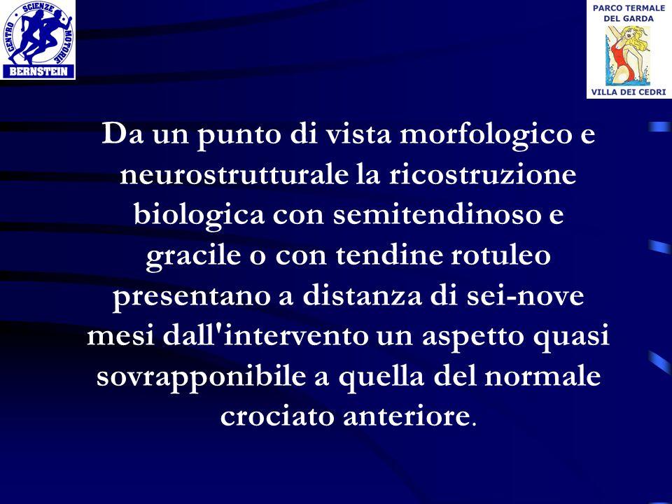 Da un punto di vista morfologico e neurostrutturale la ricostruzione biologica con semitendinoso e gracile o con tendine rotuleo presentano a distanza