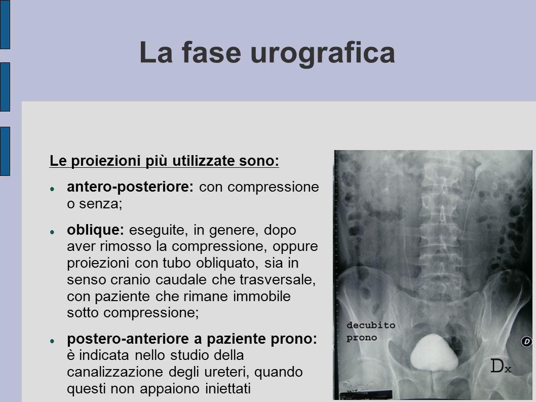 La fase urografica Durante la fase di compressione, eseguiamo uno o due radiogrammi per il solo settore delle ombre renali e dei bacinetti, a 8-10 min