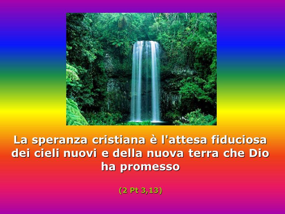 La speranza cristiana è l attesa fiduciosa dei cieli nuovi e della nuova terra che Dio ha promesso (2 Pt 3,13)