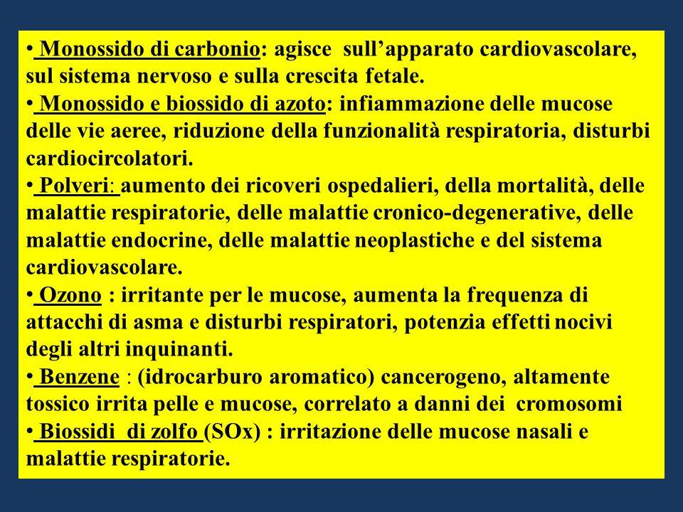Monossido di carbonio: agisce sull'apparato cardiovascolare, sul sistema nervoso e sulla crescita fetale. Monossido e biossido di azoto: infiammazione