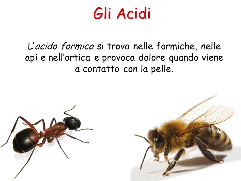 Gli Acidi L'acido formico si trova nelle formiche, nelle api e nell'ortica e provoca dolore quando viene a contatto con la pelle.