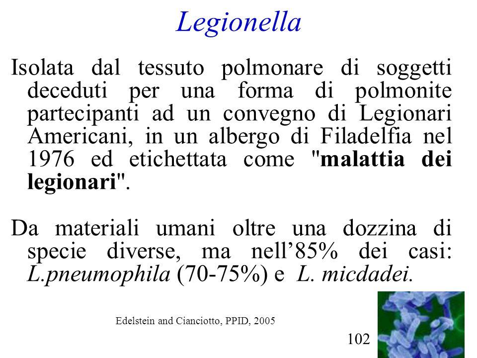 102 Legionella Isolata dal tessuto polmonare di soggetti deceduti per una forma di polmonite partecipanti ad un convegno di Legionari Americani, in un