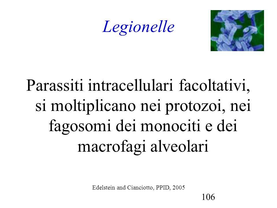 106 Legionelle Parassiti intracellulari facoltativi, si moltiplicano nei protozoi, nei fagosomi dei monociti e dei macrofagi alveolari Edelstein and C
