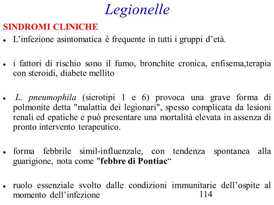 114 Legionelle SINDROMI CLINICHE L'infezione asintomatica è frequente in tutti i gruppi d'età. i fattori di rischio sono il fumo, bronchite cronica, e