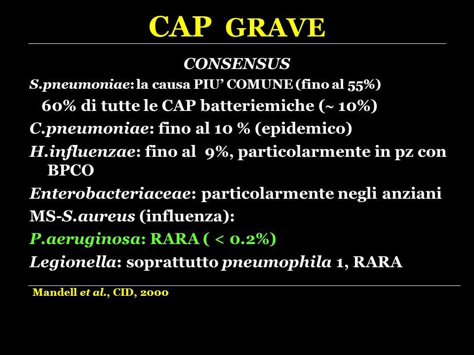 CAP GRAVE CONSENSUS S.pneumoniae: la causa PIU' COMUNE (fino al 55%) 60% di tutte le CAP batteriemiche (  10%) C.pneumoniae: fino al 10 % (epidemico)