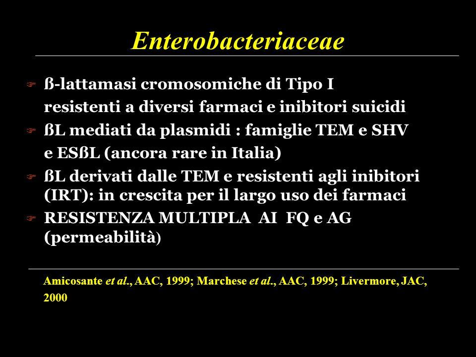 Enterobacteriaceae  ß-lattamasi cromosomiche di Tipo I resistenti a diversi farmaci e inibitori suicidi  ßL mediati da plasmidi : famiglie TEM e SHV