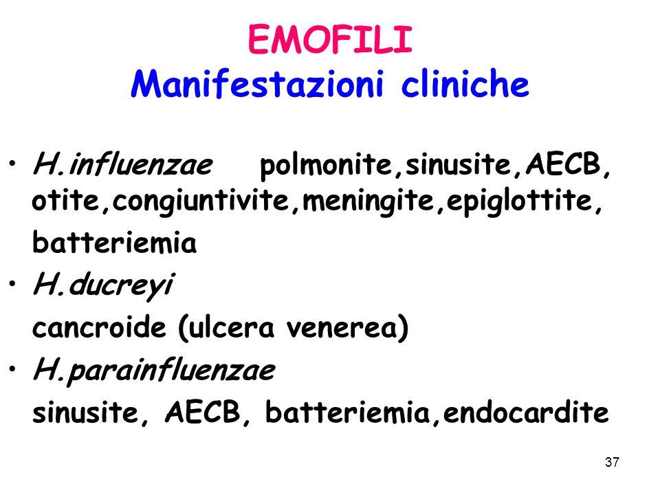 37 EMOFILI Manifestazioni cliniche H.influenzae polmonite,sinusite,AECB, otite,congiuntivite,meningite,epiglottite, batteriemia H.ducreyi cancroide (ulcera venerea) H.parainfluenzae sinusite, AECB, batteriemia,endocardite