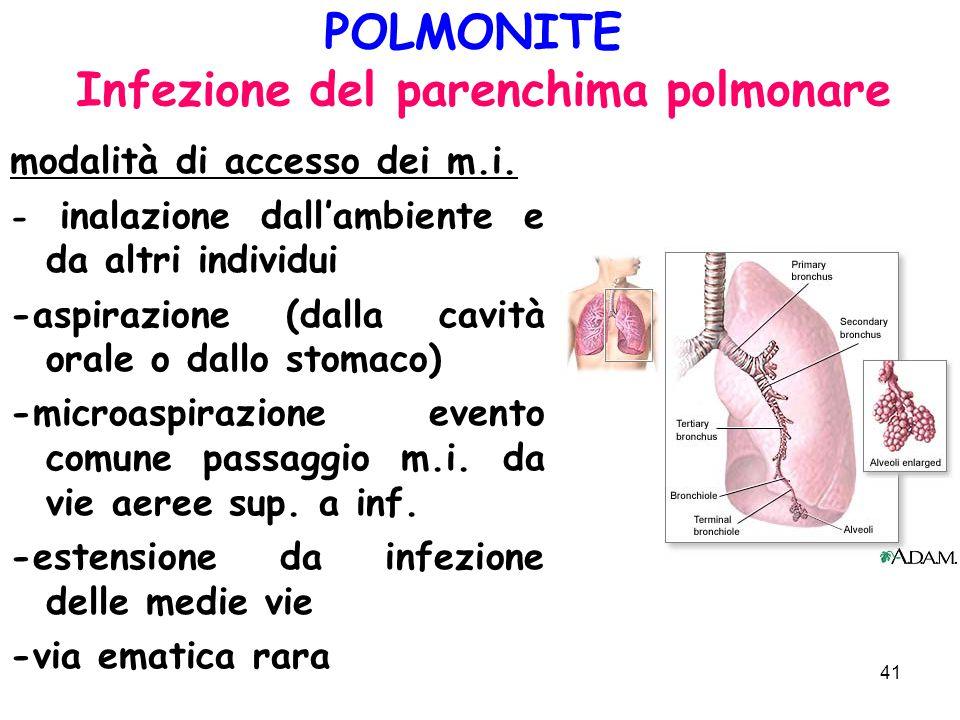 41 POLMONITE Infezione del parenchima polmonare modalità di accesso dei m.i. - inalazione dall'ambiente e da altri individui -aspirazione (dalla cavit