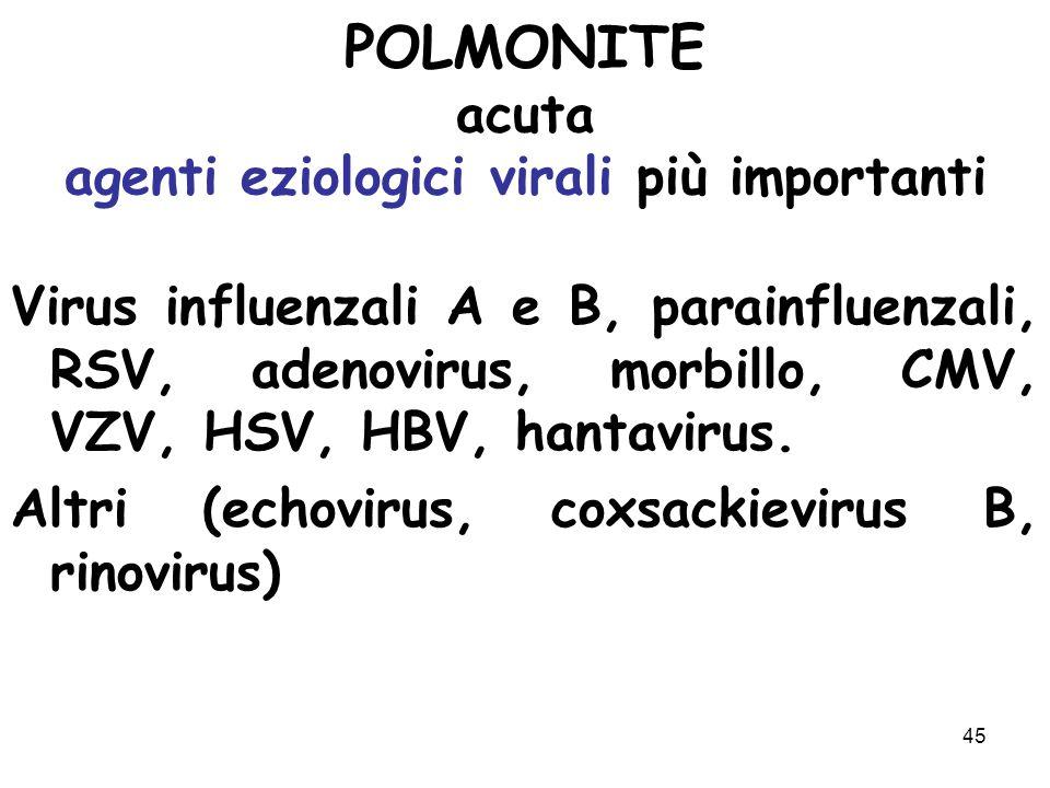 45 POLMONITE acuta agenti eziologici virali più importanti Virus influenzali A e B, parainfluenzali, RSV, adenovirus, morbillo, CMV, VZV, HSV, HBV, ha