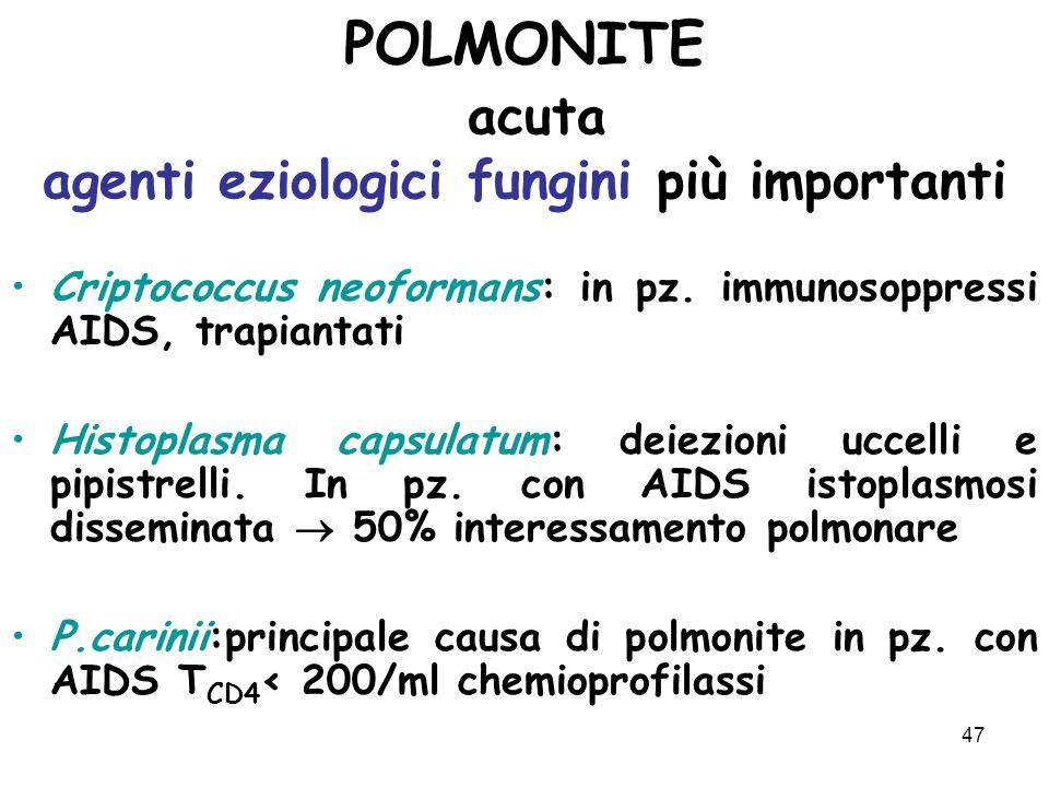 47 POLMONITE acuta agenti eziologici fungini più importanti Criptococcus neoformans: in pz.