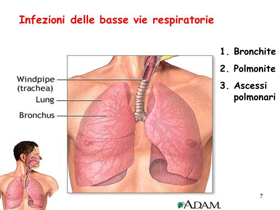 RESISTENZA dello S.pneumoniae: CONSEGUENZE CLINICHE  La RESISTENZA alla PENICILLINA (MIC  4 mg/L) POTREBBE NON RAPPRESENTARE UNA MINACCIA ( MORTALITA') PER LE INFEZIONI NON-MENINGEE  ANCHE BASSI LIVELLI di RESISTENZA ai MACROLIDI PORTANO A FALLIMENTI CLINICI E BATTEREMIE IMPROVVISE NELLE CAP  La RESISTENZA ai FQ (NUOVI COMPOSTI) PORTA A FALLIMENTI CLINICI NELLE CAP Meera et al., CID, 2000; Bush et al., CID, 2000; Low et al., NEJM, 2001