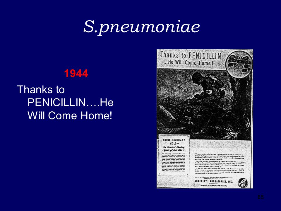 85 S.pneumoniae 1944 Thanks to PENICILLIN….He Will Come Home!