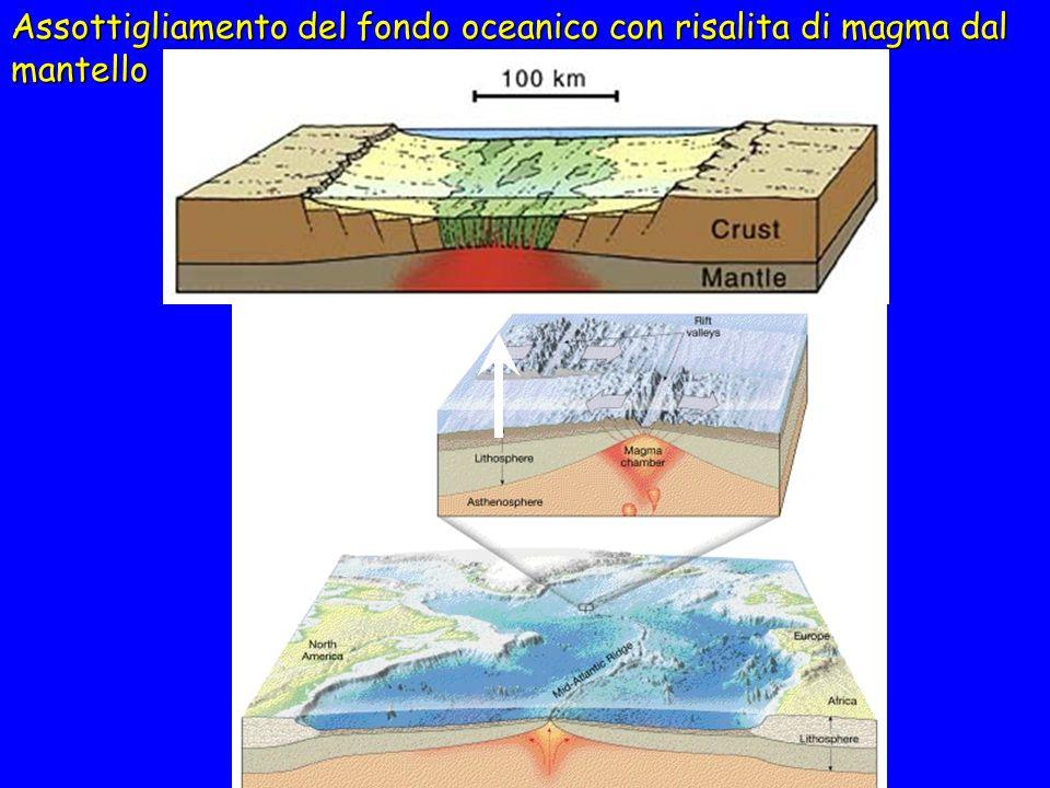 Margini divergenti Nei bacini oceanici, dorsali medio-oceaniche Nei continenti, rift valley Vulcanismo intenso Sismicità limitata negli oceani, maggio