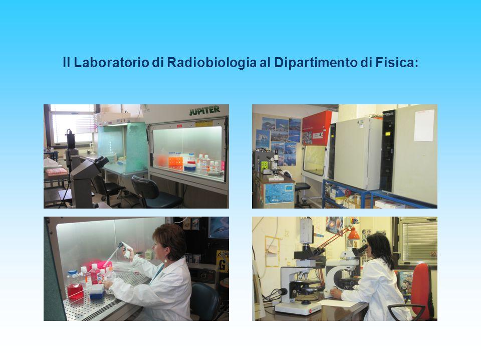 Il Laboratorio di Radiobiologia al Dipartimento di Fisica: