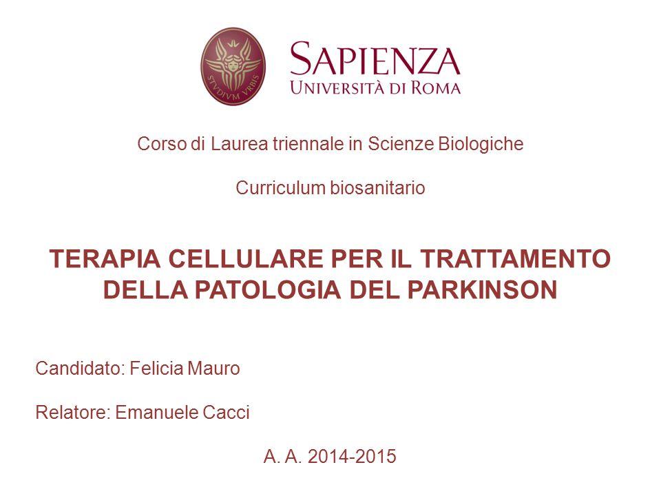Corso di Laurea triennale in Scienze Biologiche Curriculum biosanitario TERAPIA CELLULARE PER IL TRATTAMENTO DELLA PATOLOGIA DEL PARKINSON Candidato: Felicia Mauro Relatore: Emanuele Cacci A.