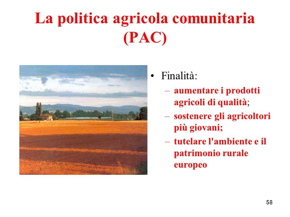 58 La politica agricola comunitaria (PAC) Finalità: –aumentare i prodotti agricoli di qualità; –sostenere gli agricoltori più giovani; –tutelare l'amb
